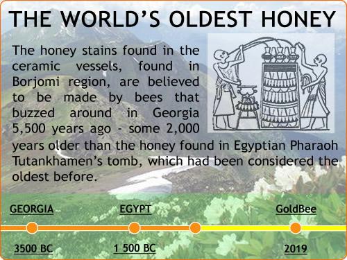 The world's oldest honey